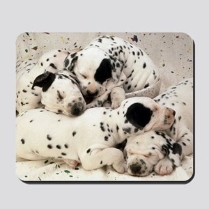 Dalmation sm fr pan print Mousepad